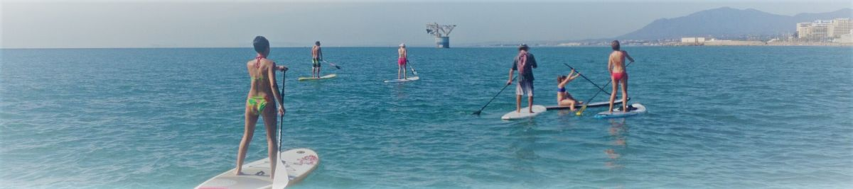Paddle surf boards for beginners
